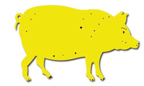 zseltaja-svinja