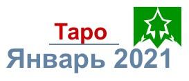 taro-ajnvar-2021